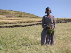 Photo: Marit Fikke / Development Fund