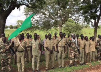 Eritrean-trained proxy front Benishangul front members gave their hands to Ethiopian regime